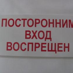 Табличка из ПВХ 297х150 мм одноцветная